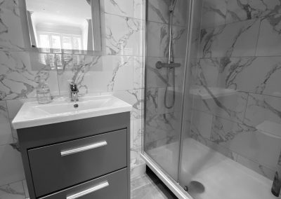Shower and vanity unit